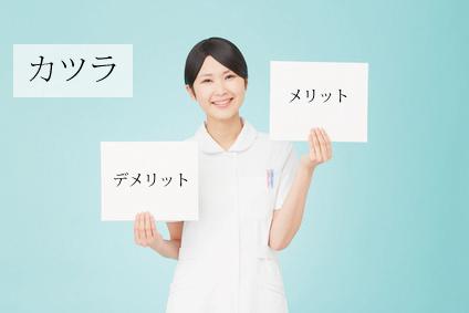 merideri_katsura