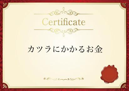 nedan_katsura