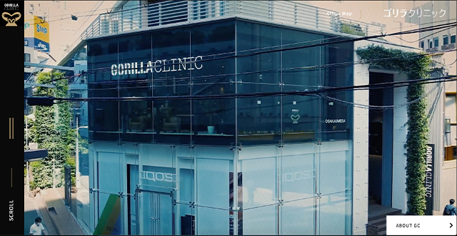 05gorilla.clinic